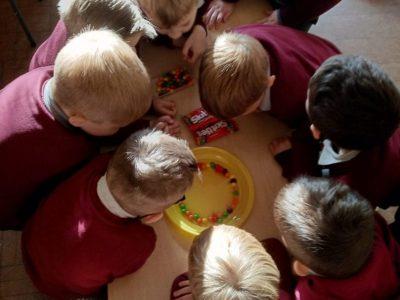 senior infants-science (1)