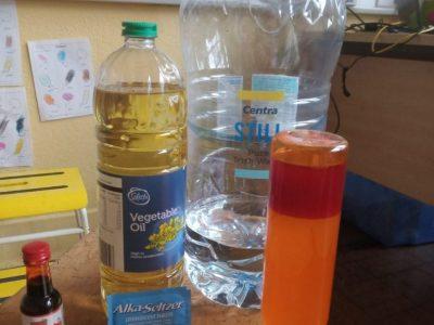 senior infants-science (3)