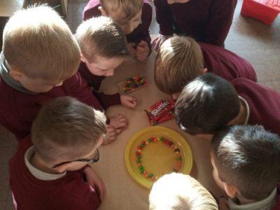 senior infants-science (4)